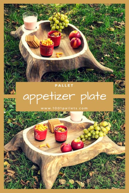 Beautiful Appetizer Pallet Plate
