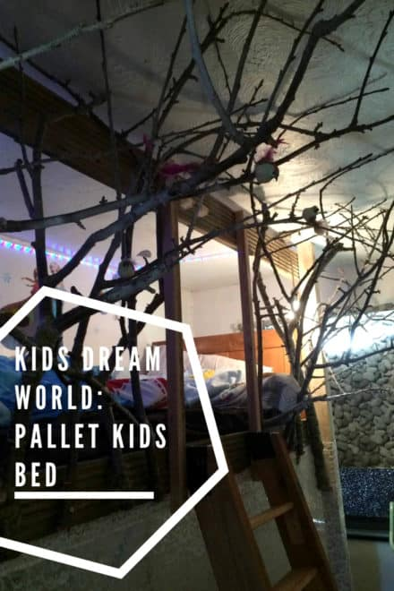 Kids Dream World: Pallet Kids Bed