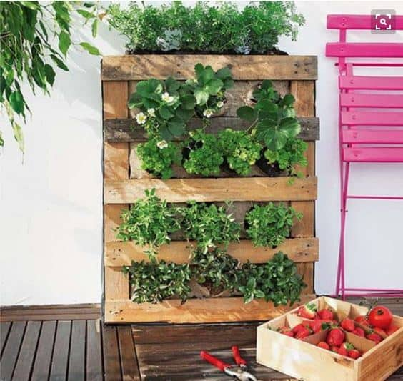 5 Springtime Pallet Projects For Your Garden