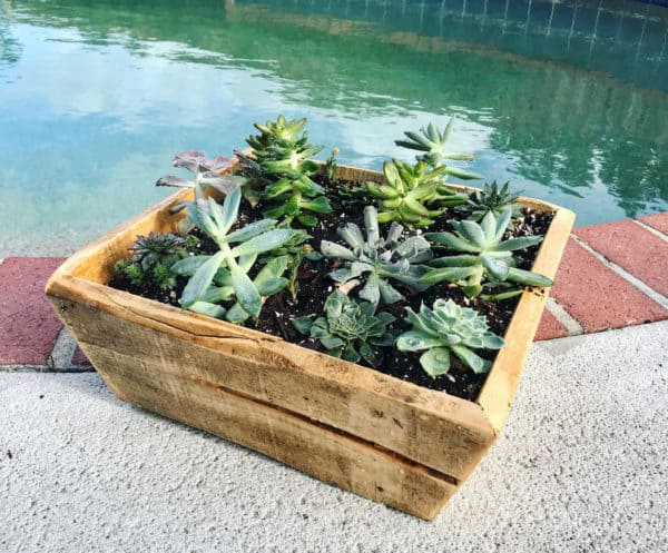 Simple Mitered Pallet Planter Pallet Home Décor Ideas Pallet Planters & Compost Bins