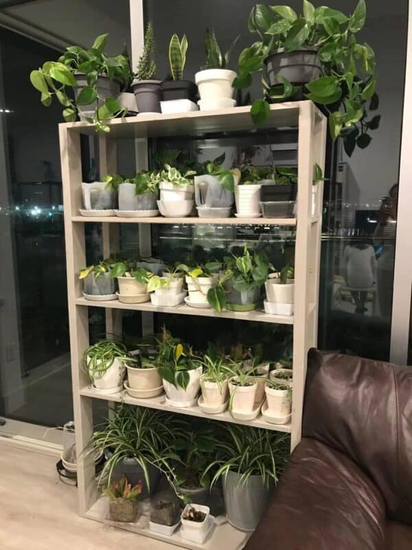 Build a Plant Shelf From Pallet Wood Pallet Shelves & Pallet Coat Hangers