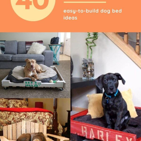 Diy Pallet Dog Bed Ideas