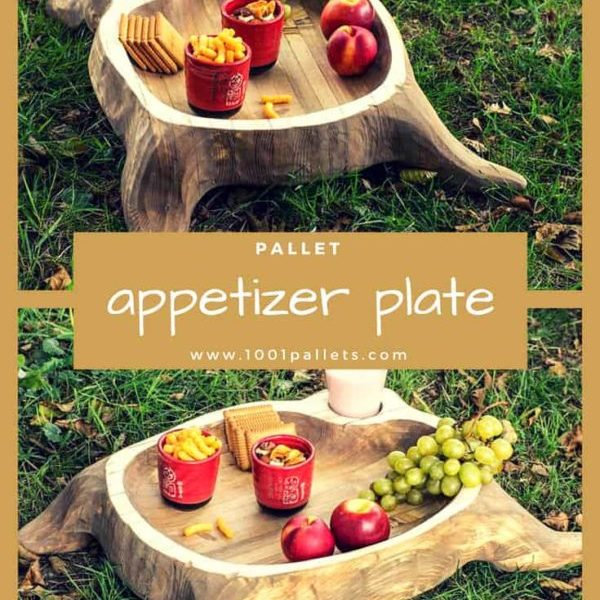 1001pallets.com-beautiful-appetizer-pallet-plate-05