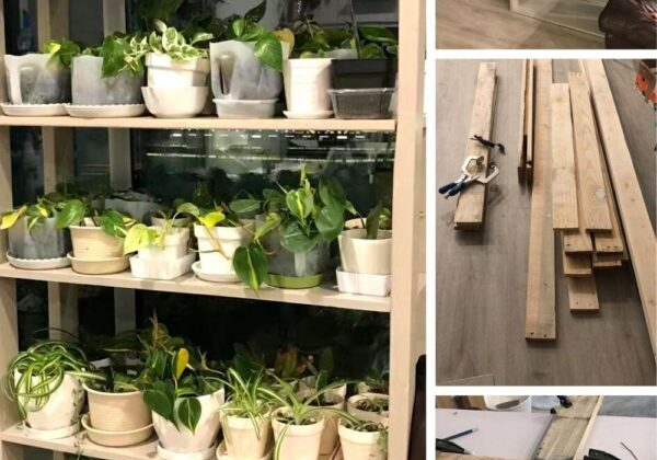 Build a Plant Shelf From Pallet Wood