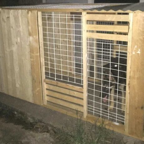 1001pallets.com-custom-made-collapsible-dog-kennels