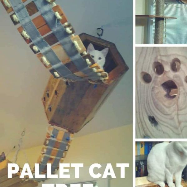 1001pallets.com-diy-pallet-cat-tree-provides-kitties-some-fun-07