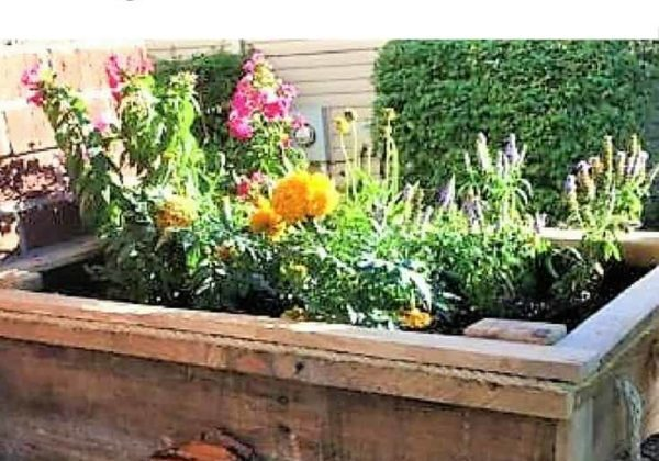 1001pallets.com-diy-video-tutorial-raised-pallet-flower-planter-features-driftwood-01