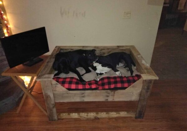 1001pallets.com-double-pallet-dog-bed