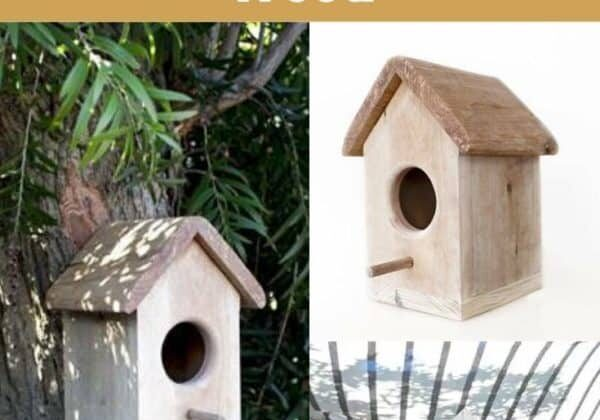 How To Make A Bird Box Out Of Pallet Wood