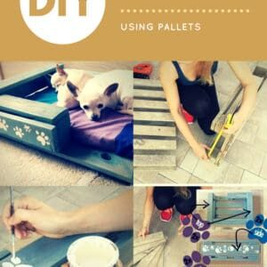 1001pallets.com-how-you-can-create-cute-pet-beds-using-pallets-01