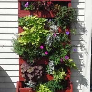 1001pallets.com-how-i-made-this-vertical-planter-from-a-discarded-pallet