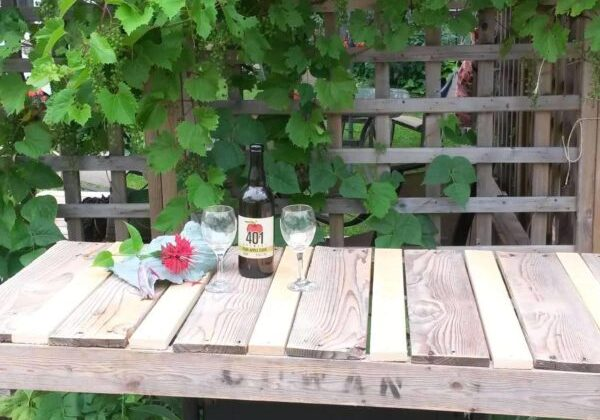 1001pallets.com-my-old-bbq-remade-into-a-rustic-serving-cart