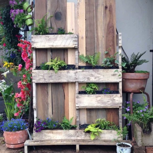 1001pallets.com-ornamental-pallet-vertical-shade-garden-01