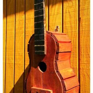 1001pallets.com-pallet-guitar-bird-house-06