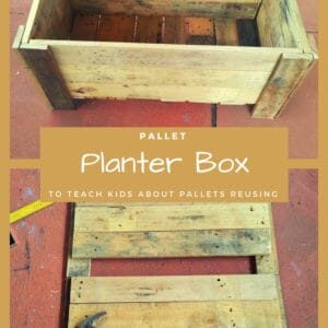 1001pallets.com-pallet-planter-box-to-teach-kids-about-pallets-reusing-06