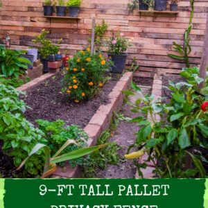 1001pallets.com-pallet-privacy-fence-creates-stylish-garden-area-01