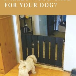 1001pallets.com-pallet-wood-gate-for-the-dog-02