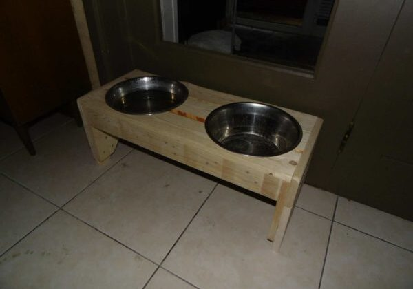 1001pallets.com-dog-trays