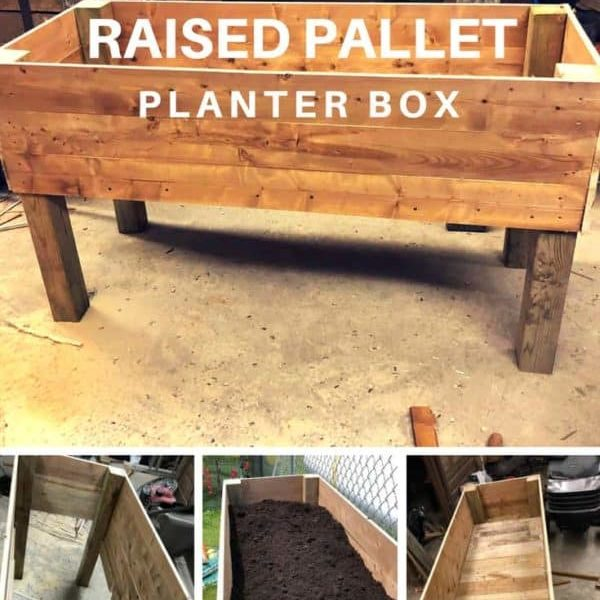 1001pallets.com-raised-pallet-planter-box-08