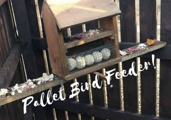 1001pallets.com-simple-attractive-pallet-bird-table-feeder-01