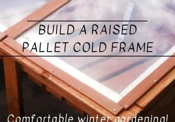 1001pallets.com-sun-worshipping-raised-pallet-cold-frame-for-winter-growing-04