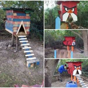 angrybird-chicken-coop