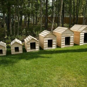 dog-house-size